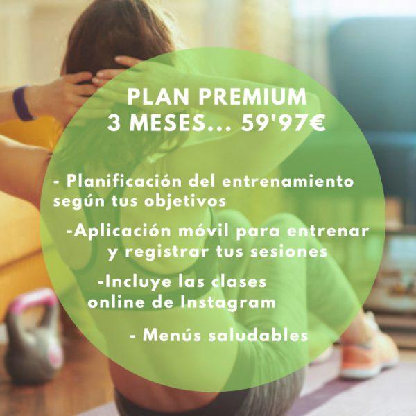 plan-premium-3